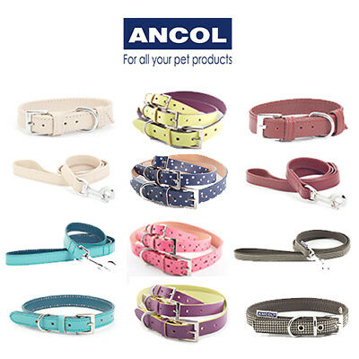 Ancol Indulgence Designer Leather Match Dog Collar & Lead Available Separately