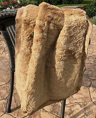 Antique Carriage Pram Buggy Rabbit Blanket for Baby Doll