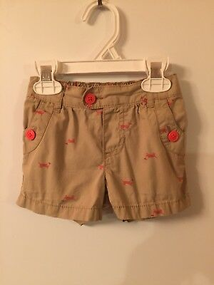 Girls Carters Shorts Size 2T