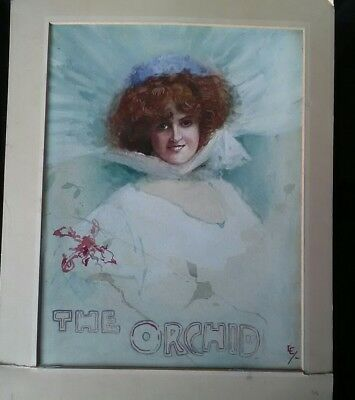 GABRIELLE RAY IN THE ORCHID ORIGINAL PAINTING C1908 WATERCOLOUR 26X34.5cms