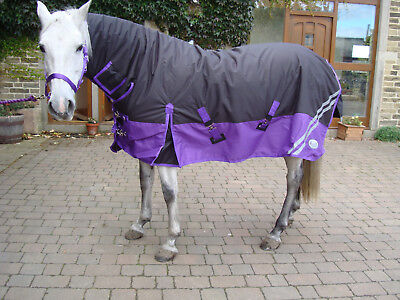 Rhinegold Aspen Plus Heavy Weight Full Neck Combo Waterproof Turnout Rug 350g