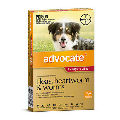 Advocate For Large Dogs 10 - 25Kg (Red) Flea, Heartworm & Worms Treatment