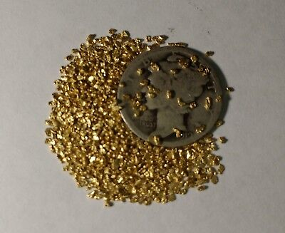 10 Alaskan Gold Nuggets 17 to 22k 25 Mesh - Buy 3 Get One Free & Free Shipping