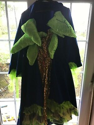 Large pantomime dame , ugly sister costume