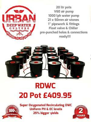 20L 20 Pot System (4Lane) For Grow Tent 2.4 x 2m Clonex DWC R Roots Propagator