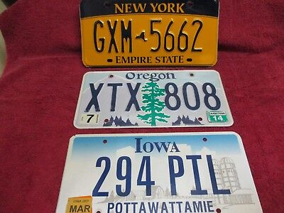 New York - Oregon  and  Iowa - Nice Quality group of 3 license plates.