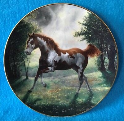Painted Sunrise Collectible Plate from the Unbridled Spirit Collection
