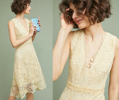 5cb3133b0cd6 NWT ANTHROPOLOGIE FLORAL LACE PALE YELLOW DAISY DONNA MORGAN DRESS Sz 4  $228 New