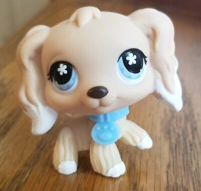 9647d50c2704 Littlest Pet Shop Australian Exclusive Cocker Spaniel Dog #568 *AUTHENTIC*  VHTF
