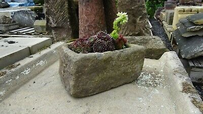 Reclaimed stone trough planted