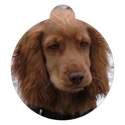 Cocker Spaniel Dog Breed Picture Pet ID tag