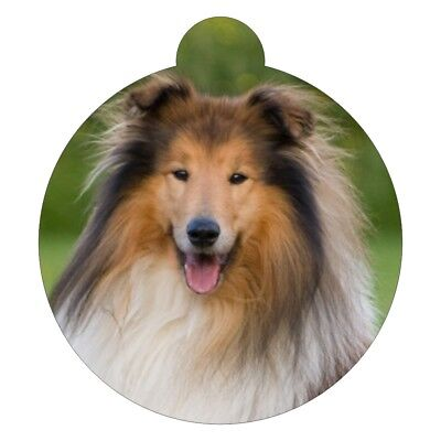 Collie Dog Breed Picture Pet ID tag