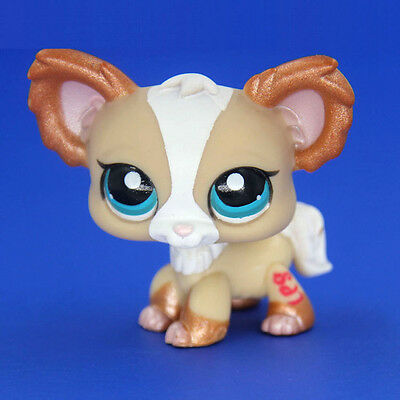 *Littlest Pet Shop* Hasbro LPS Shimmer Tan White Chihuahua Puppy Dog Rare 2018