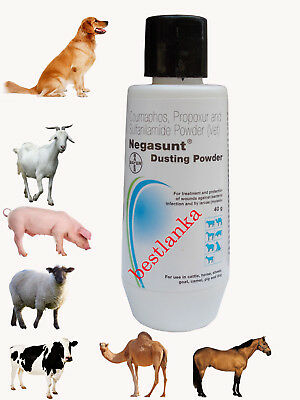 BAYER Negasunt Anti Bacteria Wound Powder for Animals  Fast Veterinary Medicine