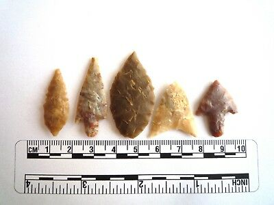 Neolithic Arrowheads x 5, High Quality Selection of Styles - 4000BC - (2430)