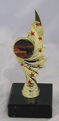 Martial Arts, Karate  Trophy Red Stars  130mm  Engraved FREE
