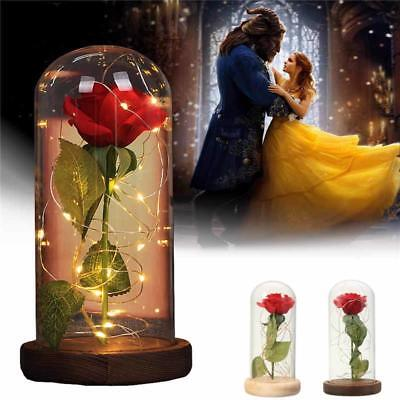 Rose Flower Enchanted Beauty Beast Gift Glass Lamp Dome Red S Led Day Valentine