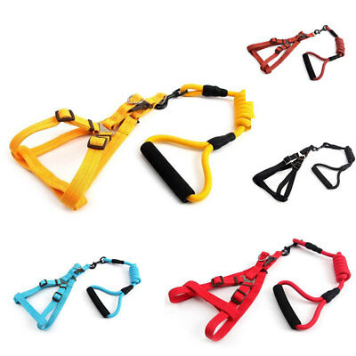 Retractable Pet Small Dog Puppy Cat Harness Collar Leash Chest Strap Lead Rope
