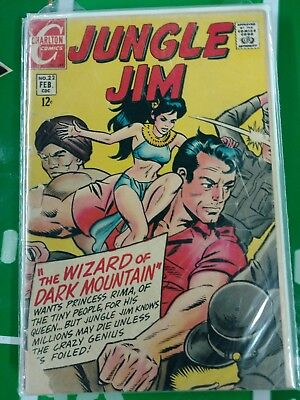 JUNGLE JIM #22 (Feb 1969) Comic Book