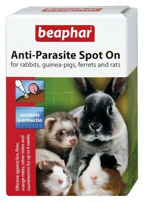 Anti-Parasite Spot-On for Small Animals Rabbits Ferrets Rats Flea Mite Treatment