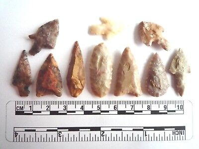 Neolithic Arrowheads x 10, High Quality Selection of Styles - 4000BC - (2453)