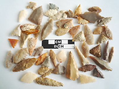 Neolithic Arrowheads x 50, Selection of Styles and Sizes - 4000BC - (0495)