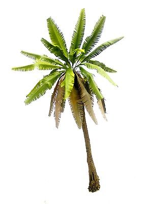 1/35 Coconut Palm Tree With Dried Leaves & Realistic Tree Trunk Detail. Tpp007