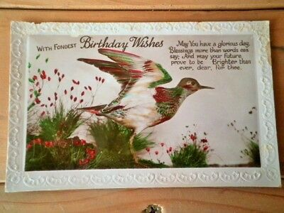 Antique Birthday Postcard Bird 1920's Real Photo Used Embossed Hand Coloured