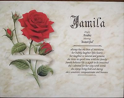 Jamila First Name Meaning Art Print-8x10-Personalized-Red Rose-New