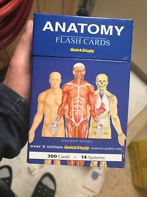 Anatomy Flash Cards 2008 Quickstudy 300 Cards 14 System 750