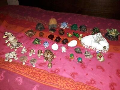 Tortues Collection  Lot De 35 Tortues  Toutes Matieres