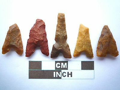Neolithic Arrowheads x 5, Eiffel / Moroccan Points, Genuine - 4000BC  (W013)