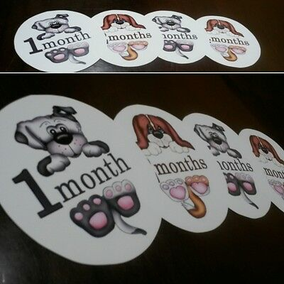 Monthly baby stickers puppies themed