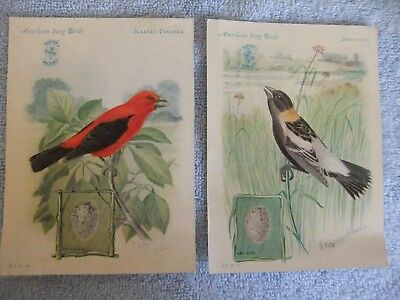 1929 Singer Sewing Machine Bird Trading Cards –  Scarlet Tanager and Bobolink
