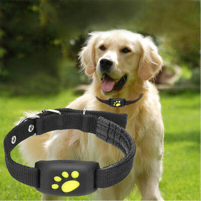 Z8-A Anti-lost Pet Tracker GPS Dog / Cat Collar Water-resistant USB Charging