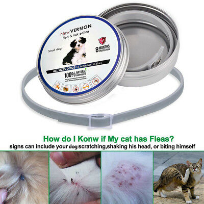 Cat Dog Collar Tick Flea Anti Insect Mosquitoes Adjustable 8Months Protection