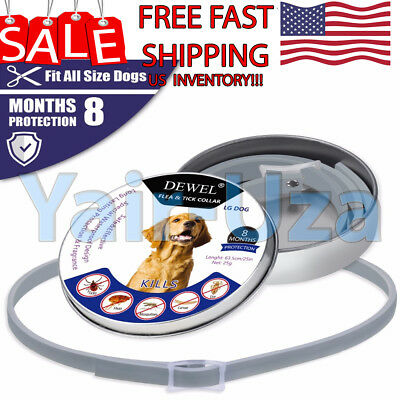 Flea & Tick Collar for Pets Dogs above 8kg 18lbs High Quality Bayer Great Dewel