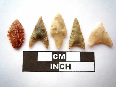 5 x High Quality Neolithic Arrowheads - 4000BC - (N051)