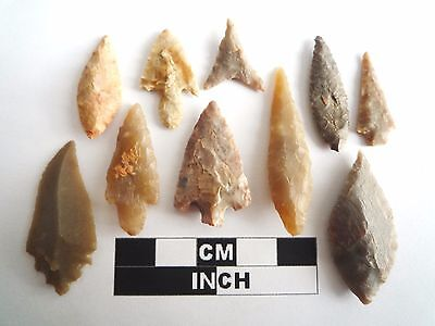 Neolithic Arrowheads x 10, High Quality Selection of Styles - 4000BC - (1078)