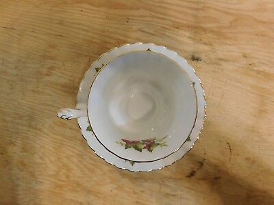 Royal Albert Bone China Tea Cup & Saucer, Canada From Sea to Sea Series