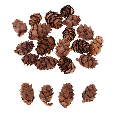 50pcs Small Real Natural Pine Cones for Christmas Ornaments Home Decoration
