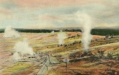 Norris Geyser Basin, Divided Back, Unposted, Yellowstone National Park, Wy