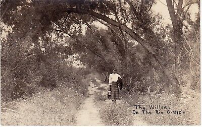 The Willows on the Rio Grande,beautiful woman, rppc, Texas, 1913         z