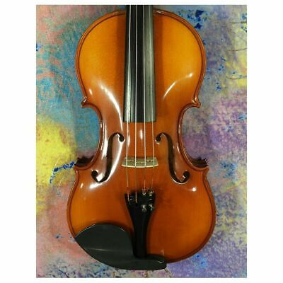 European Made HORA V200 Elite 4/4 violin Outfit set up Zyex Strings bow and case