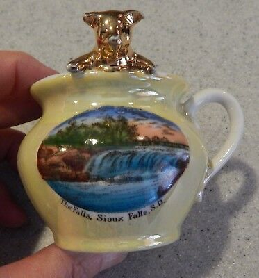 Sioux Falls, S.D. SO DAK South Dakota Souvenir China Cup With a Pig - The Falls