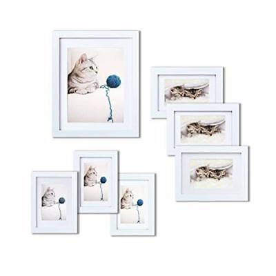 Drift Wood Green Picture Frame 1-1//4 Polystyrene WholesaleArtsFrames 2631-A-C4