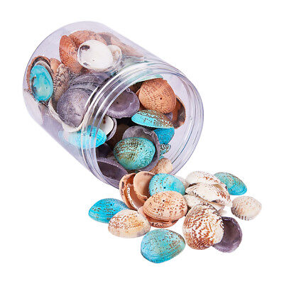 1 Box 100-120x Assorted Dyed Natural Sea Shells Seashell with Hole for Craft