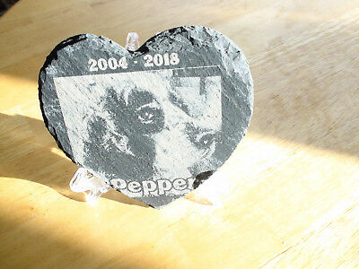 Dog, cat, Horse, Rabbit PET memorial. Photo reproduction engraved onto slate. UK