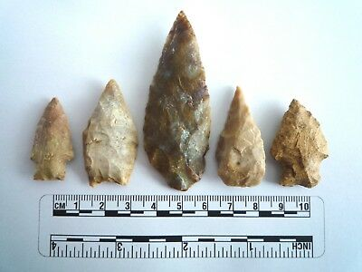 5 x Native American Arrowheads found in Texas, dating from approx 1000BC  (2224)