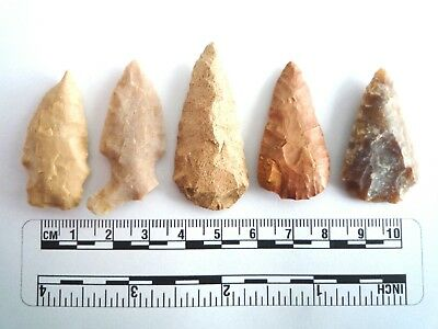 5 x Native American Arrowheads found in Texas, dating from approx 1000BC  (2245)